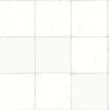 5216288A.jpg
