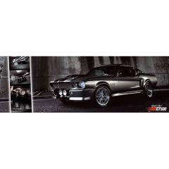 TAVLA EASTON - MUSTANG GT500 30X90