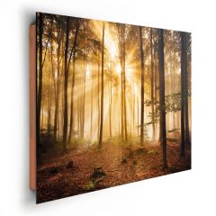 TAVLA ENLIGHTENED FOREST 60X90 CM