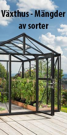 Växthus - Mängder av sorter
